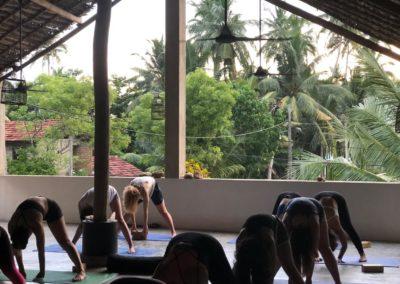 200hr-yoga-teacher-training-sri lanka-stefancamilleriyoga